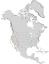 Salix laevigata range map 0.png