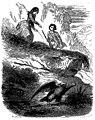 Sand - Œuvres illustrées de George Sand, 1854 (page 230 crop).jpg