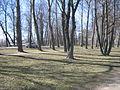 SanktPeterburg2013 0008.JPG