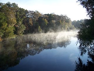 Santa Fe River (Florida) River in the United States of America