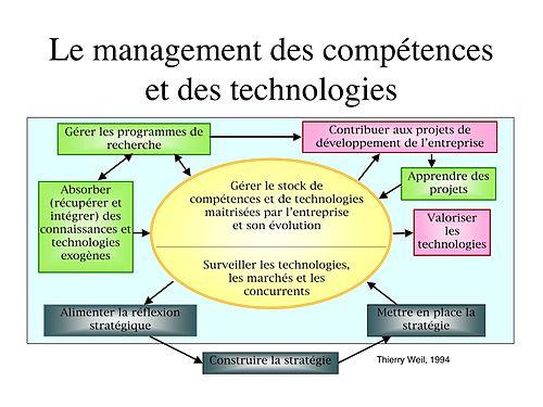 Schema management des compétences et technologies