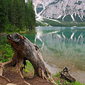Scorcio sul lago (3855310069).jpg