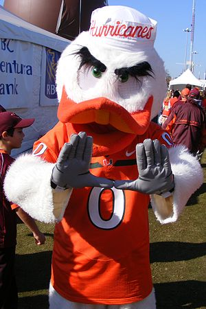 English: Sebastian the Ibis, mascot of the Uni...