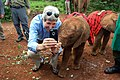 Secretary Kerry Poses for a Photo with a Baby Elephant at the Sheldrick Elephant Orphanage (17358471511).jpg