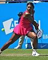 Serena Williams (5849357828).jpg