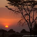 Serengeti, Tanzania - panoramio (3).jpg