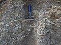 Shale (Logan Formation, Lower Mississippian; Jackson North roadcut, Ohio, USA) 2 (37516574051).jpg