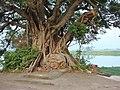 Shan Pui Tsuen 11.jpg