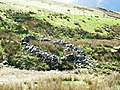 Sheepfold - geograph.org.uk - 437128.jpg