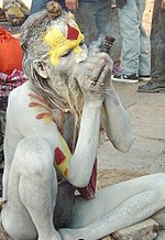 A sadhu in Pashupatinath Temple during Shivaratri