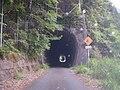 Shizuoka Pref r-288 Natsuyaki tunnel.jpg
