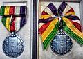 Showa Enthronement Commemorative Medal 06.JPG