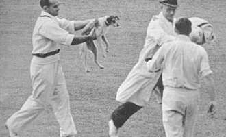 Sid Barnes with the Australian cricket team in England in 1948 - Barnes chasing Skelding with the dog at The Oval