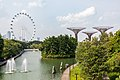 Singapore (SG), Gardens By The Bay -- 2019 -- 4759.jpg