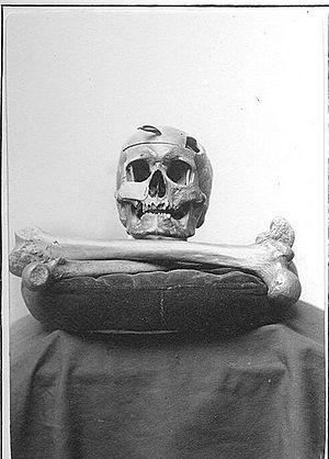 secrets of the tomb skull and bones pdf