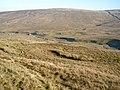Sleddale Pasture - geograph.org.uk - 692665.jpg