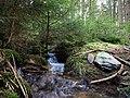 Small stream in the Taunus 3.jpg