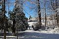 Snowing 085.JPG