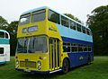 Solent Blue Line 37 NDL 637M 3.JPG