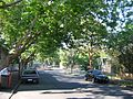 South Yarra Cromwell St S thru Motherwell.jpg