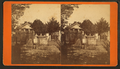 Spanish graveyard, showing some of the oldest tombs in the country, from Robert N. Dennis collection of stereoscopic views 2.png