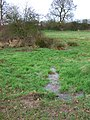 Spring and pond - geograph.org.uk - 312445.jpg