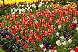 Spring in London (7113790447)