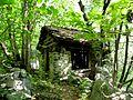 Stalla abandonata nel Bosco - panoramio.jpg