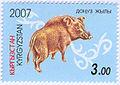 Stamp of Kyrgyzstan donuz.jpg