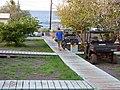 Starr-161216-0685-Cordia subcordata-view camp with Jamie-Honokanaia-Kahoolawe (31621283624).jpg