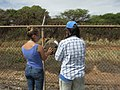 Starr-170824-0437-Prosopis pallida-Noe and Kim setting up bee monitoring stations-Kahului Airport-Maui - Flickr - Starr Environmental.jpg