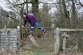 Stepped Gate Stile - geograph.org.uk - 712834.jpg