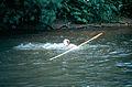 Stocherkahnrennen08 1984-0065.jpg