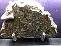 Stony iron meteroite Boston Science Museum.agr.jpg