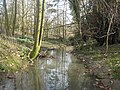 Stream at Burys Court - geograph.org.uk - 1217413.jpg