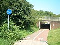 Subway under the A28, Great Chart - geograph.org.uk - 130718.jpg