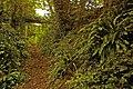 Sunken bridleway - geograph.org.uk - 960533.jpg