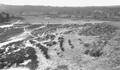 Sunningdale 1913 2.png