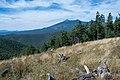 Sunset Trail No. 23 (21755320562).jpg