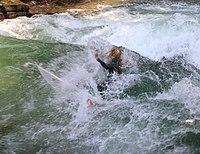 Surfing Eisbach Englischer Garten Muenchen-5.jpg