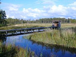 Svanekilde vådområdepark