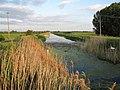 Swaffham Bulbeck Lode - geograph.org.uk - 1329490.jpg