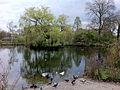 Sydenham Wells Park.jpg