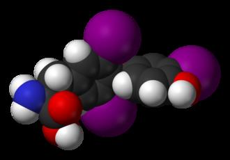 Thyroid hormones - Image: T3 3D vd W