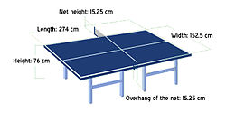 Table Tennis the table.jpg