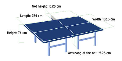 Table Tennis the table