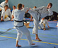 Taekwon-Do Landesmeisterschaft Uetersen 2014 04.jpg
