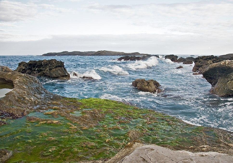 Taiwan 2009 East Coast ShihTiPing Giant Stone Steps Algae FRD 6581