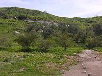 Tel-Zafit (1).JPG