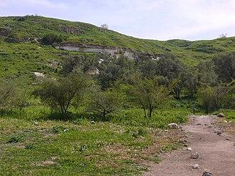 Tell es-Safi - Image: Tel Zafit (1)